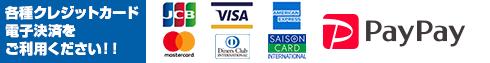 各種クレジットカード 電子決済を ご利用ください!!