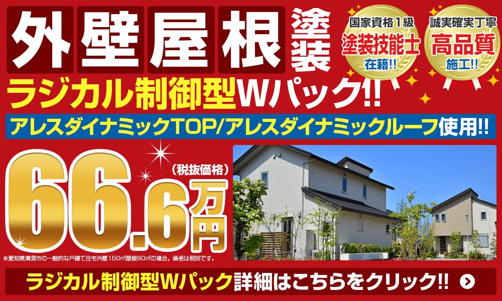 外壁屋根塗装Wパック66.6万円