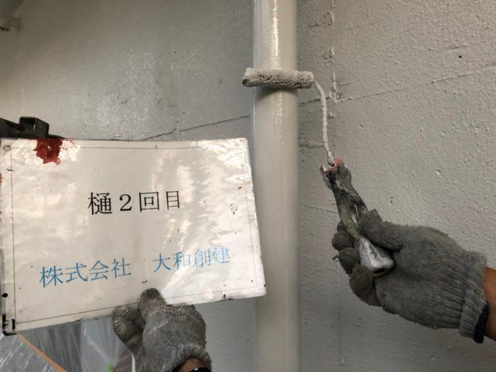 樋塗装2日目