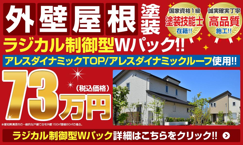 外壁屋根塗装Wパック73万円